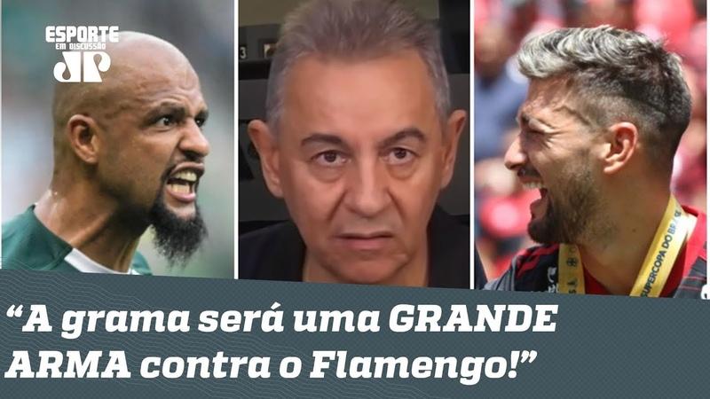 E o Flamengo Será QUASE IMPOSSÍVEL bater o Palmeiras nessa grama sintética!, dispara Flavio
