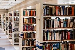 В Липецке появятся модельные библиотеки