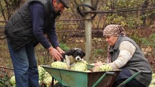 Əsil Ukrayna Borşu, Country Life Vlog, Outdoor Cooking