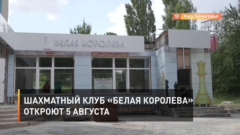 Шахматный клуб Белая королева откроют 5 августа