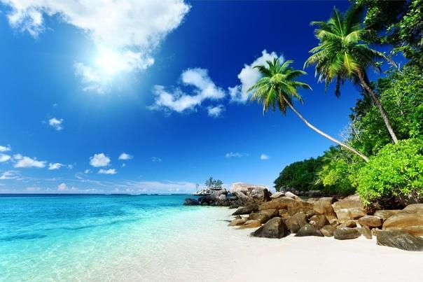 Живые Обои Бесплатно Море