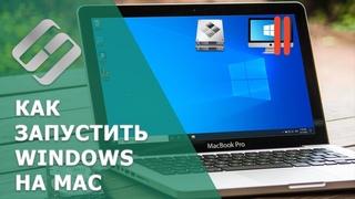 Как восстановить данные iMac, MackBook, Mac Pro / Mini, флешек и карт памяти программой для Windows
