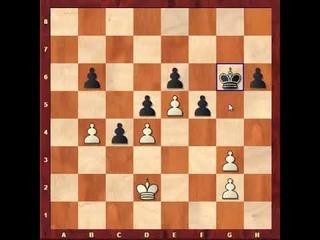 Изучаем шахматы
