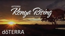 Kenya Rising- Providing Business Opportunities To Kenyan Farmers