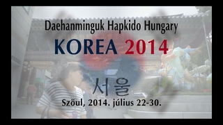 Korea Trip 2014 - DHMG Hapkido Hungary - KTMAA