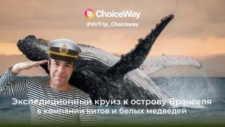 Виртуальное  Путешествие Круизная Экспедиция за Полярный Круг