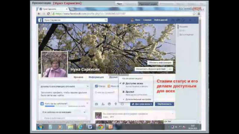 Работа в сети Фейсбук 15 04 2015 Нунэ Саркисян