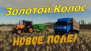 Farming Simulator 19. ФС 19. ЗОЛОТОЙ КОЛОС ! №60