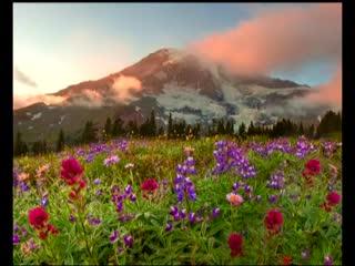 Красивая природа и нежная музыка. Флейта и саксофон..mp4