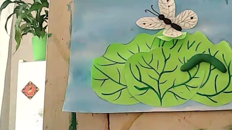 Занятие студии Нафаня Бабочка капустница