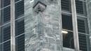 Konzert auf dem Carillon des Roten Turm zu Halle (Saale) 1 7