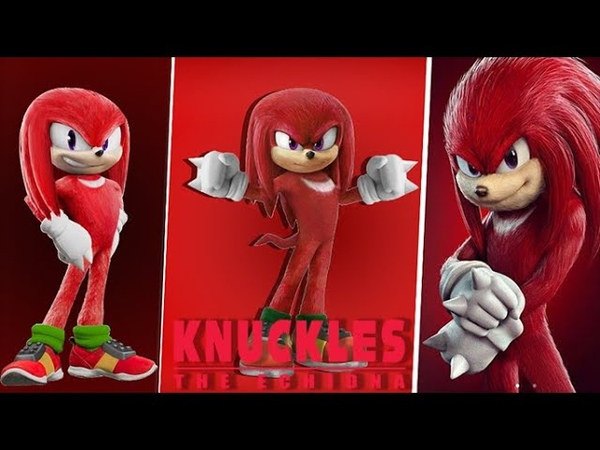 Knuckles the Echidna Choose Your Favorite Design