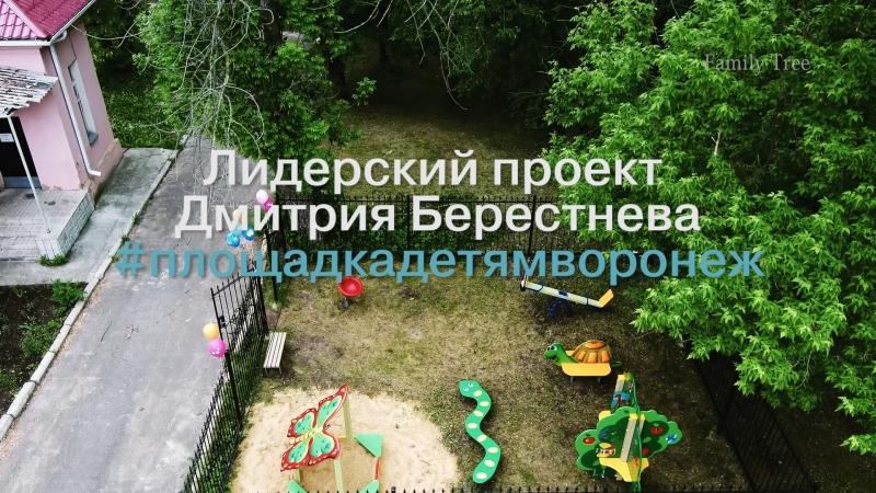 Лидерский проект Дмитрия Берестнева