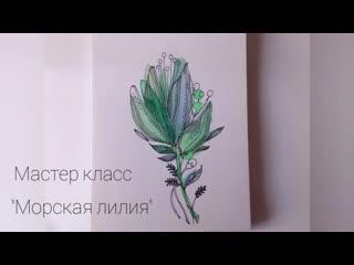 """Мастер класс акварелью """"Морская лилия"""""""