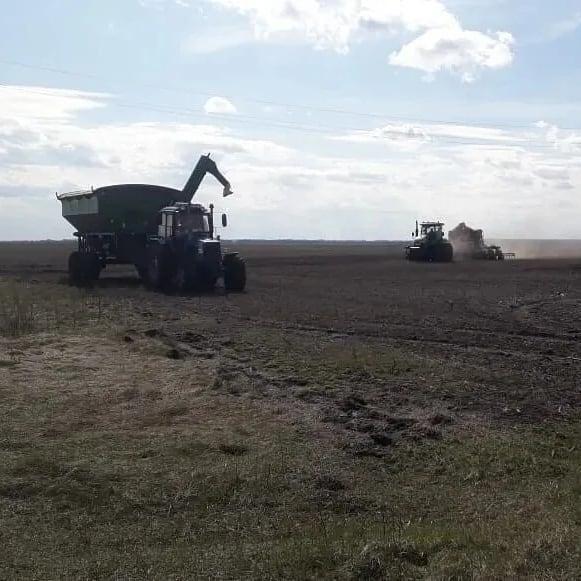 Аграрии Петровского района продолжают посевную кампанию