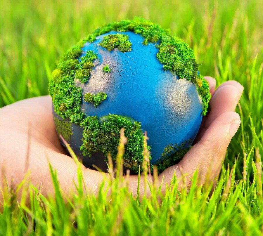 Поздравляем Вас с Днём эколога и Всемирным Днём окружающей среды!