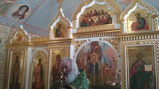 Протоиерей Евгений Соколов. Чистая, любящая Бога душа не будет грешить