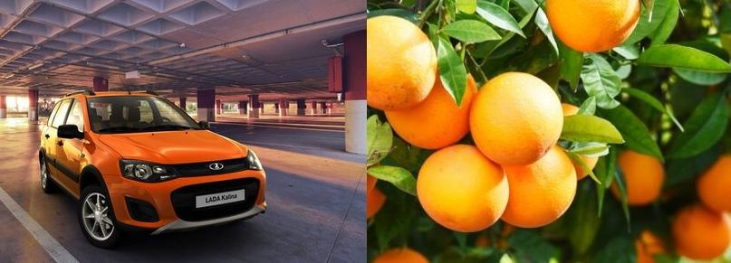 111-Апельсин