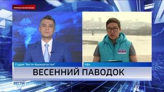 Уровень рек за сутки поднялся на метр: в Башкирии начали эвакуацию жителей