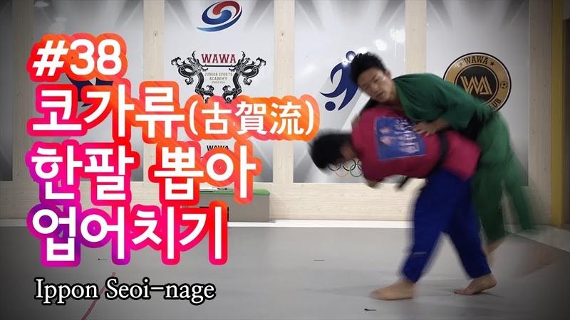 한판TV 코가처럼하는 한팔뽑아업어치기 Ippon Seoi nage AUTO ENG SUB
