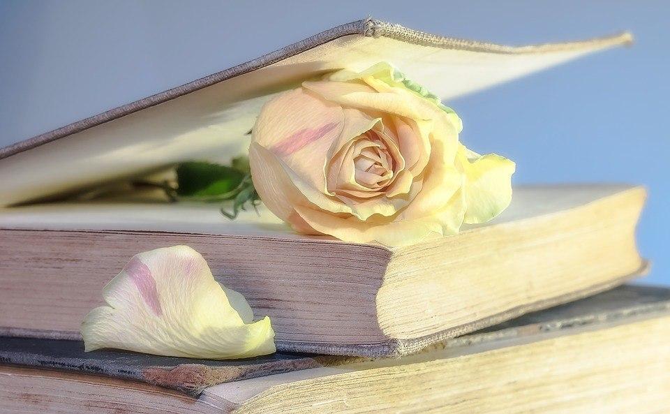 Подписчики соцсетей библиотеки в Некрасовке узнают, как можно хранить книги дома
