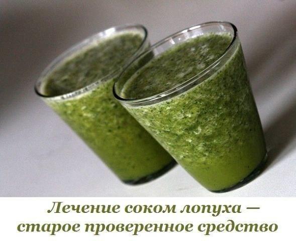 Лечение соком лопуха — старое проверенное средство   ВКонтакте