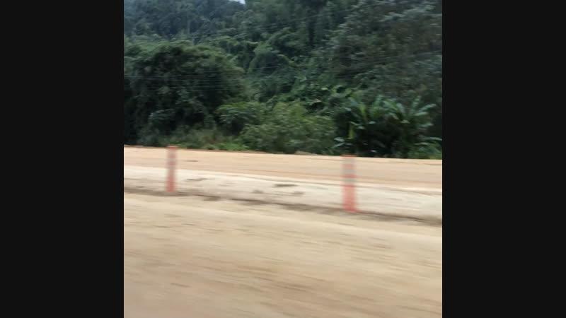По дороге в Чианг Рай