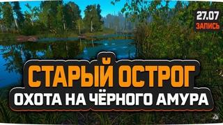 Охота на Чёрного Амура, озеро Старый Острог — Русская Рыбалка 4