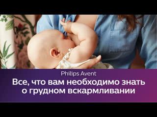 Школа Philips Avent: все, что вам необходимо знать о грудном вскармливании