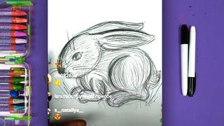 Урок рисунка для детей - рисуем кролика простым карандашом