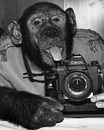 Личный фотоальбом Рустама Рахимова