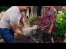 Путешествие 2: Таинственный остров [Трейлер2] / Journey 2: The Mysterious Island (2012) [Trailer1] [Eng] [HD]