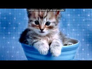 «с моей стены» под музыку песня кошки, гулявшей сама по себе ))) я кошка, кошка, кошка... знакомы мы немножко, а близкого знакомства ни с кем я не вожу. сама по себе, сама по себе, сама по себе гуляю. сама по себе, сама по себе, сама по себе брожу.... picrolla