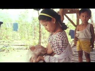 Шокирующая азия 3: во власти тьмы / shocking asia iii: after dark (с. квонг, такафуми нагаминэ) [1995, документальный, dvdrip]