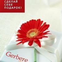 Шугаринг паста Gerbere Санкт-Петербург