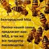 Пасека нашей Семьи, мёд Белгород.