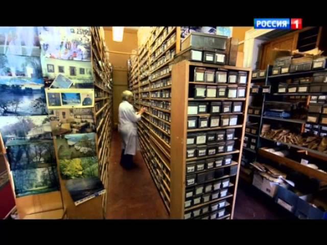 Николай Вавилов Накормивший человечество Документальный фильм