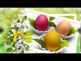 Easter Is Coming (Ernesto Cortazar-A Moment You Will Always Remember