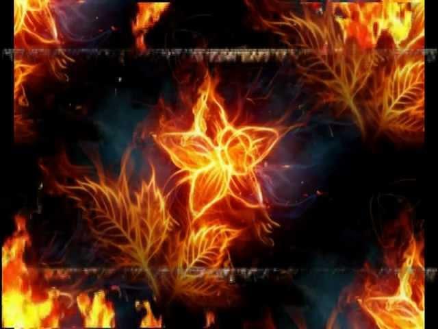 Вангелис Завоевание рая