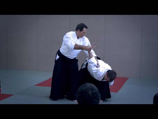 Aikido: Christian Tissier Paris Dec 2014