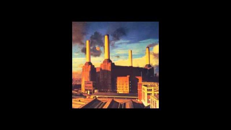 Pink Floyd - Pigs (Three Different Ones) (Alameda Coliseum, Oakland, California, 09.05.1977)