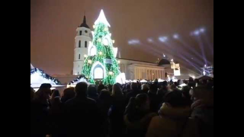 Vilnius. Kalėdų eglutė! 2015 m.