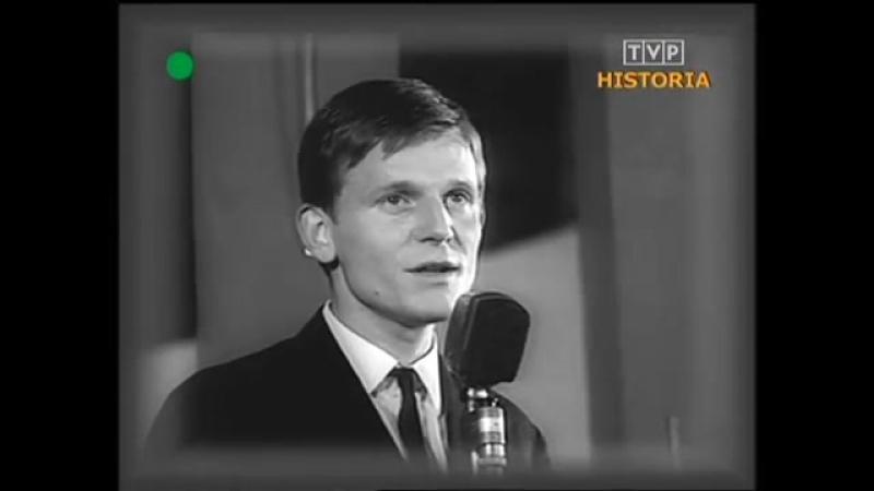 Piotr Szczepanik Goniac kormorany