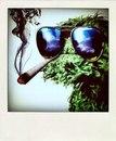 Denis Zen фотография #23