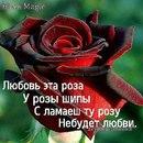 Фотоальбом Наины Конденко