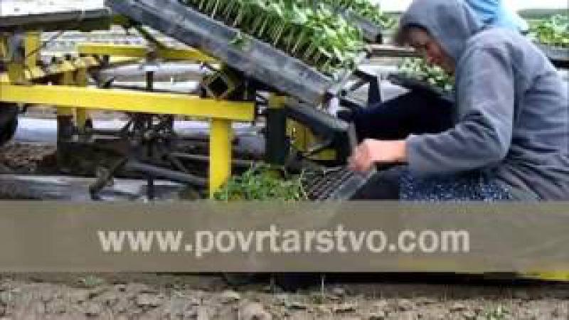 Рассадопосадочная машина RAIN ☔ FLO