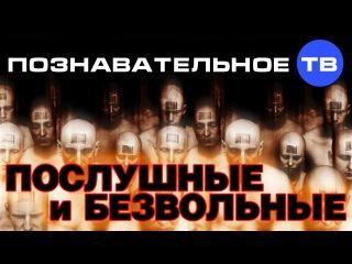 Послушные и безвольные (Познавательное ТВ, Михаил Величко)