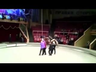 Сходила с пьяным мужем в цирк.