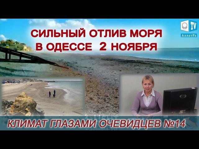 Сильный отлив моря в Одессе 2 ноября. Климат глазами очевидцев № 14