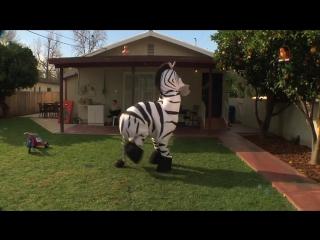 Dope zebra rhett and link gmm